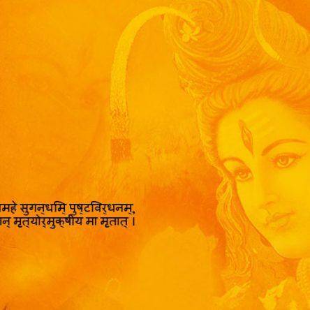 Maha Mrityunjaya Pooja