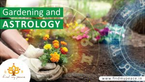 maxresdefault 3 300x169 - Gardening and Astrology 🌴🍂🍀☘️🌻, find my peace