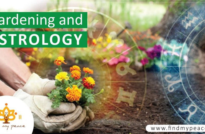 Gardening and Astrology 🌴🍂🍀☘️🌻